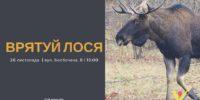 БЛОГ : Браконьерско-охотничье лобби опять жаждет крови лосей (Часть 2)